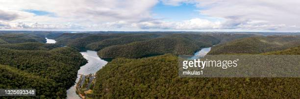kuring-gai chase national park - sydney chase stock pictures, royalty-free photos & images
