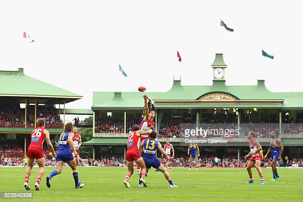 Kurt Tippett of the Swans and Nic Naitanui of the Eagles contest the ball during the round five AFL match between the Sydney Swans and the West Coast...