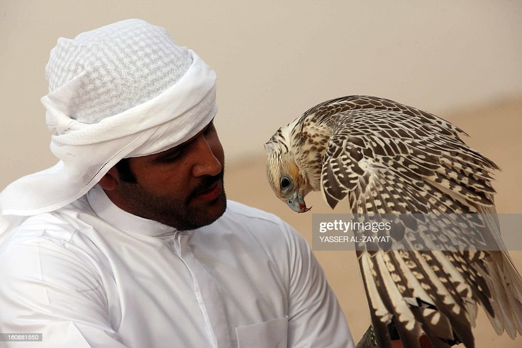 A Kuwaiti man holds his falcon during a competition in al-Salmi district, 120 kms west of Kuwait City on February 7, 2013, held as part of the ongoing Popular Heritage Festival. The one-month event is held annually to commemorate popular activities in Kuwaiti heritage, featuring camel races, falcons contests, fishing competitions and others.