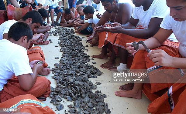 Kuwaitis look for pearls in shells that divers picked from the sea during the annual pearl diving season on August 2 2016 off the coast of the port...
