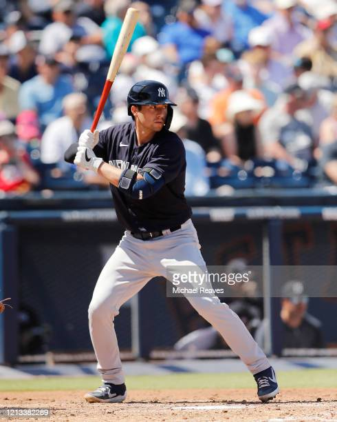 Kyle Higashioka of the New York Yankees at bat against the Washington Nationals during a Grapefruit League spring training game at FITTEAM Ballpark...