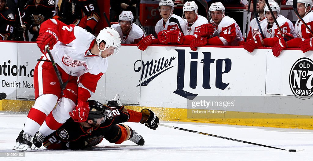 Kyle Palmieri #21 of the Anaheim Ducks reaches for the puck against Brendan Smith #2 of the Detroit Red Wings on February 23, 2015 at Honda Center in Anaheim, California.