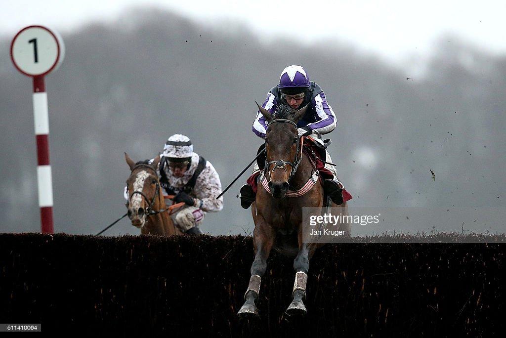 Haydock Races : News Photo