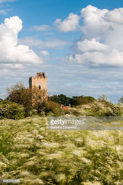 CONTENT] Kyme Tower in the village of South Kyme Lincolnshire UK with a bank of cow parsley being blown about by the wind in the foreground