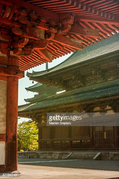 kyoogokokuji kondo temple and pagoda - merten snijders stock pictures, royalty-free photos & images