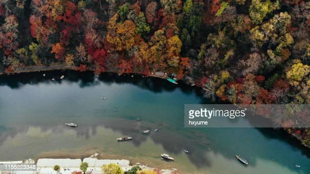 kyoto arashiyama herfst esdoorn boom bos luchtfoto - landelement stockfoto's en -beelden