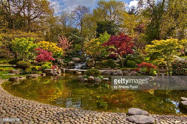 kyoto garden at holland park, london, united kingdom - holland park stock pictures, royalty-free photos & images