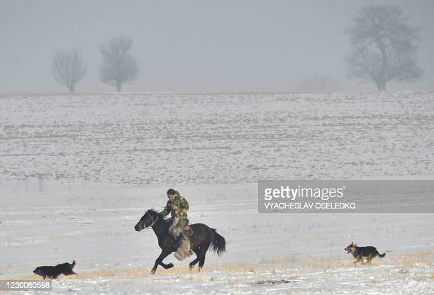 Kyrgyz riders play the traditional Central Asian sport of Kok-Boru or Buzkashi in the village of Chokmorov some 20 kilometres from Bishkek on...