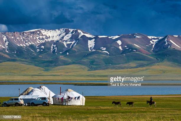 kyrgyzstan, song kul, nomad's camp - kyrgyzstan stock pictures, royalty-free photos & images