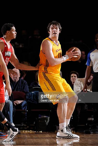 Kyrylo Fesenko of the Canton Charge posts up against Daniel Orton of the Maine Red Claws at the Canton Memorial Civic Center on March 26 2014 in...