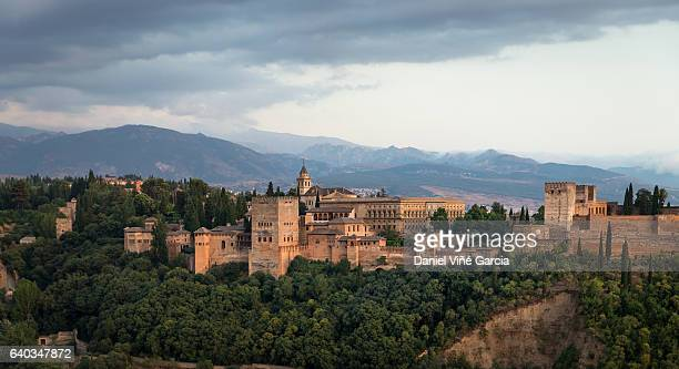 la alhambra, granada, andalusia, spain - granada province stock pictures, royalty-free photos & images