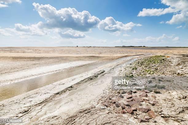 la baie de regnéville sur mer à marée basse - marée stock pictures, royalty-free photos & images