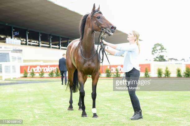 La Belle Jude after winning the Le Pine Funerals Handicap at Ladbrokes Park Hillside Racecourse on March 13 2019 in Springvale Australia
