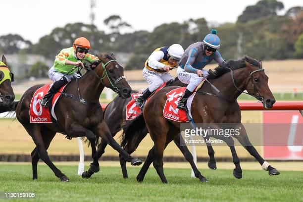 La Belle Jude ridden by Joe Bowditch wins the Le Pine Funerals Handicap at Ladbrokes Park Hillside Racecourse on March 13 2019 in Springvale Australia