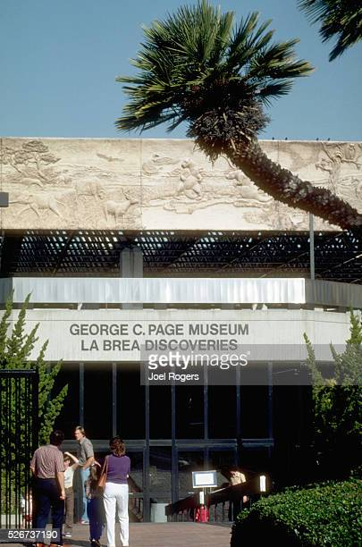 La Brea Discoveries at George C Page Museum in Los Angeles