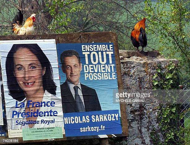 Picture of campaign posters of French socialist party presidential candidate Segolene Royal and rightwinger presidential candidate of the UMP party...