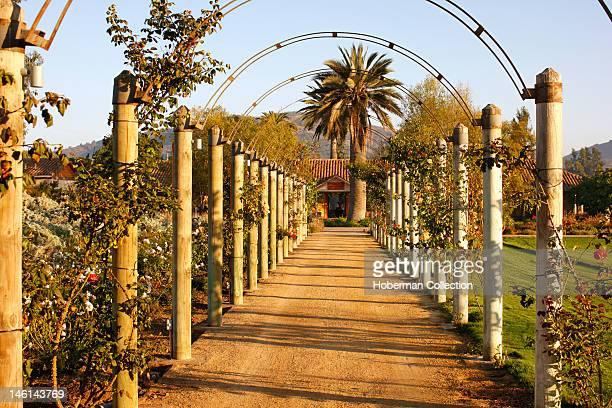 La Casona Guesthouse Matetic Vineyards Chile