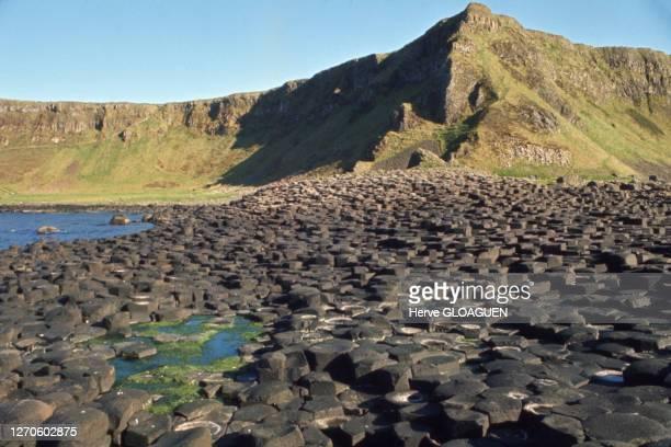 La chaussée des géants avec ses quelques 40 000 colonnes de basaltes polygonales, comté d'Antrim Irlande du Nord.