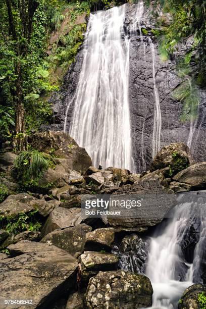 la coca falls - paisajes de puerto rico fotografías e imágenes de stock