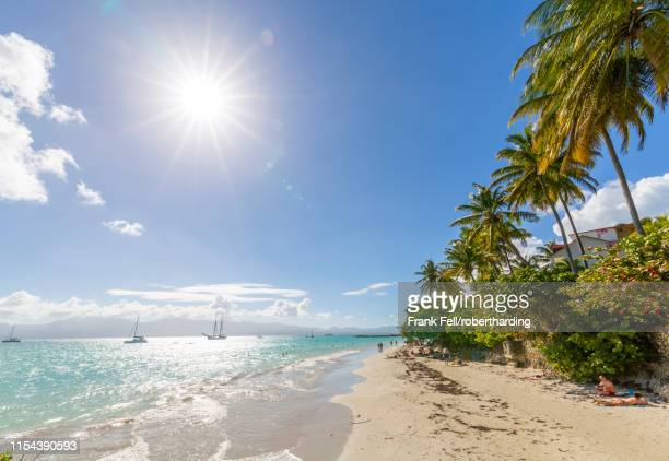 la datcha beach, pointe-a-pitre, guadeloupe, french antilles, west indies, caribbean, central america - adults only stock pictures, royalty-free photos & images