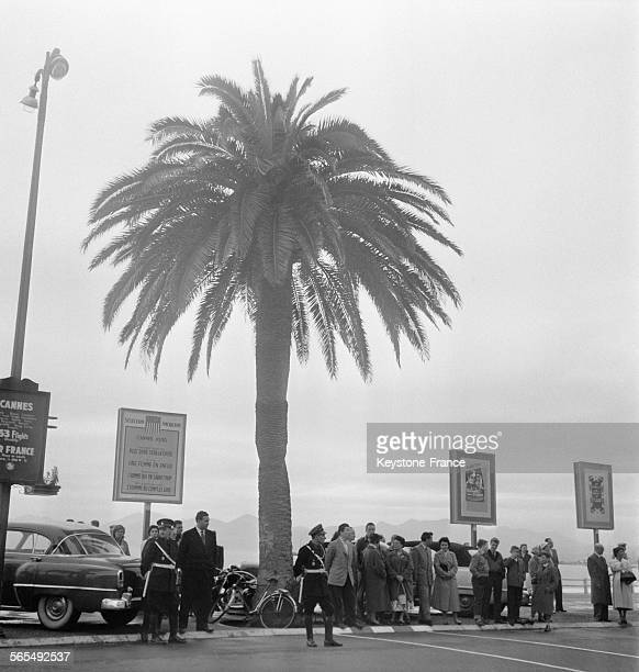 La foule attendant les vedettes pendant le Festival international du film à Cannes France en 1956