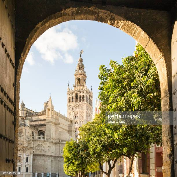 la giralda framed by an arch seville, spain - seville stock pictures, royalty-free photos & images
