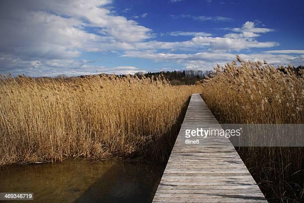 la grande cariçaie - pontoon bridge stock pictures, royalty-free photos & images