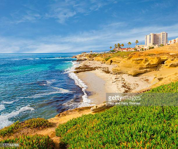 la jolla coastline in southern california (p) - san diego stock pictures, royalty-free photos & images
