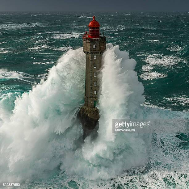 la jument dans la tempête - stiff stock pictures, royalty-free photos & images