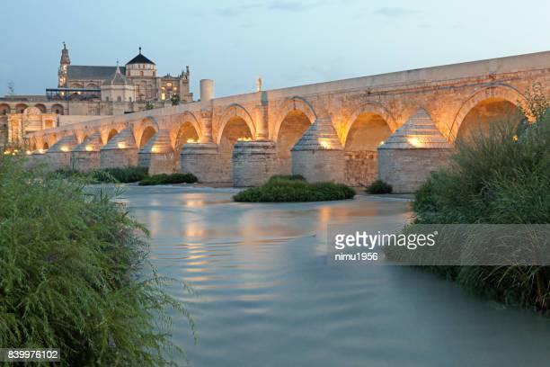 la mezquita cathedral and roman bridge across the guadalquivir – cordoba (cordova) - spain - periodo medievale stock pictures, royalty-free photos & images