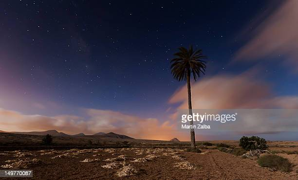 La noche en Roque, Fuerteventura