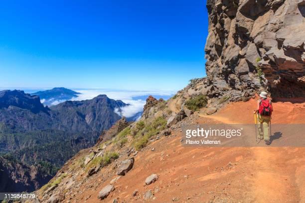 la palma, islas canarias (e): sendero en el parque nacional de la caldera de taburiente - parque nacional fotografías e imágenes de stock