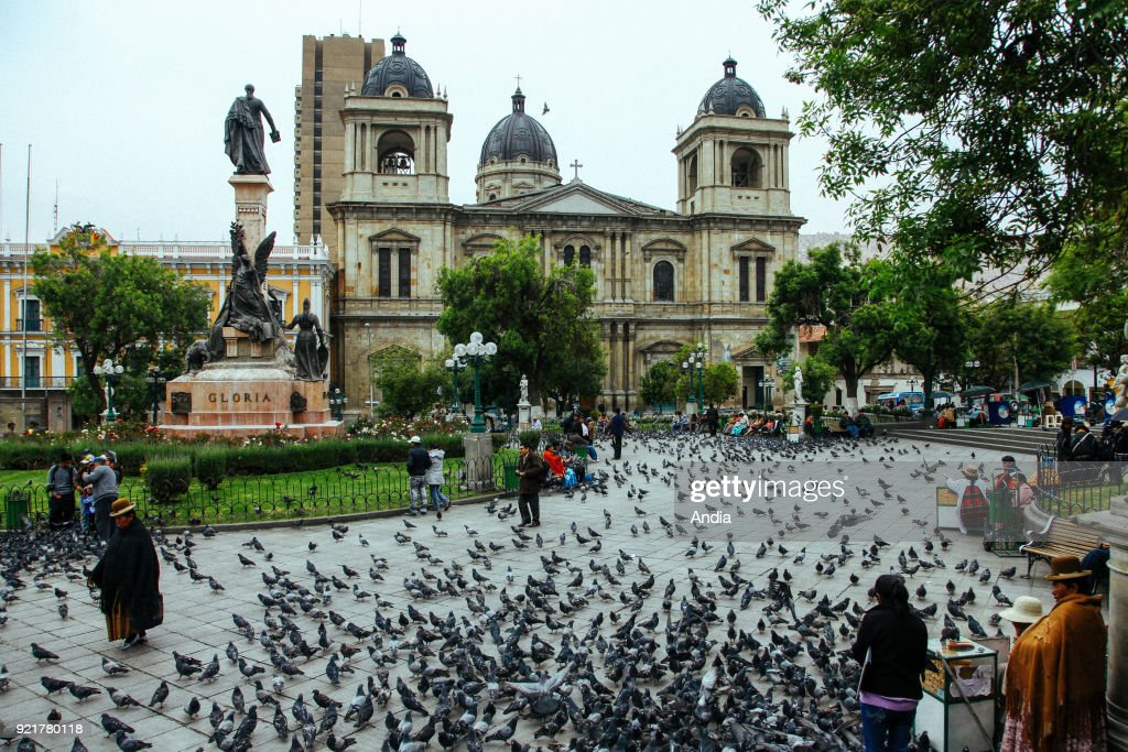 La Paz Cathedral, Cathedral Basilica of Our Lady of Peace viewed from the 'plaza Murillo' square covered in pigeons.
