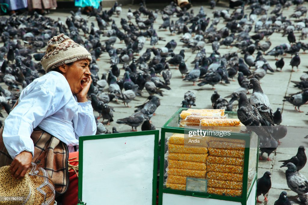 La Paz, corn seller. : News Photo