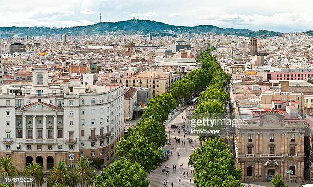 la rambla barcelona aerial cityscape panorama barri gotic catalonia spain - avenue stock pictures, royalty-free photos & images
