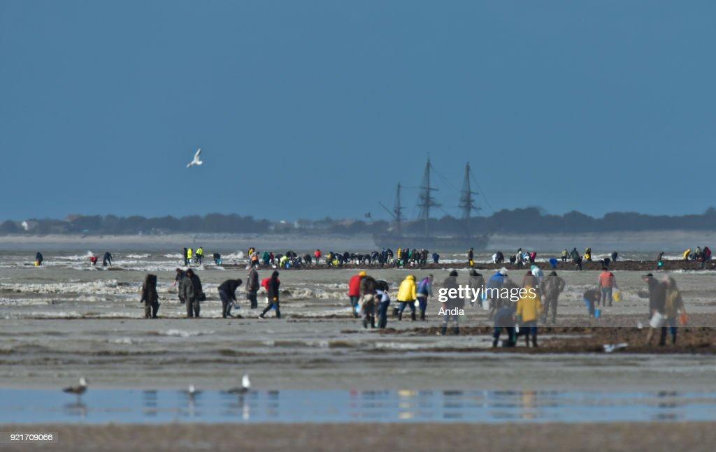 Fishing from the shore on the Atlantic coast. : News Photo