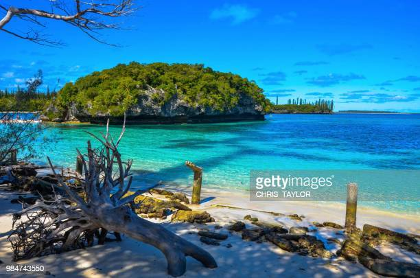 la rocher - new caledonia stock photos and pictures