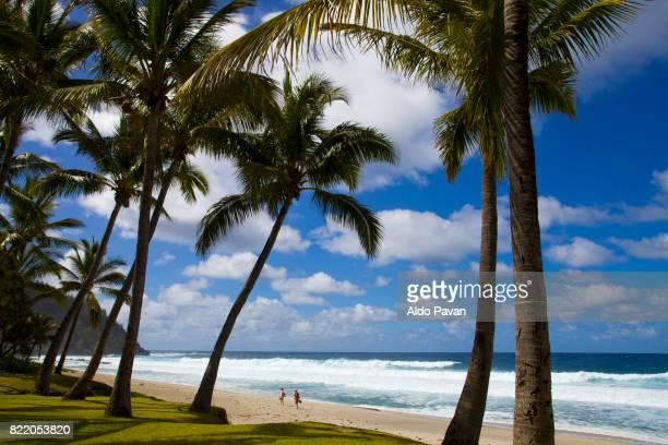 la réunion, la grande anse - isla reunion fotografías e imágenes de stock