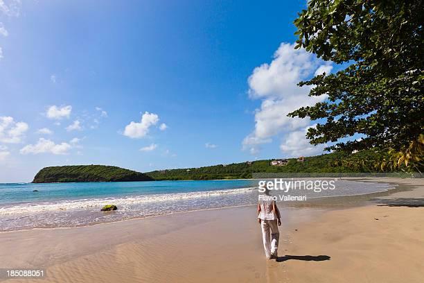 sagesse la bahía, granada w.i. - paisajes de isla de  granada fotografías e imágenes de stock