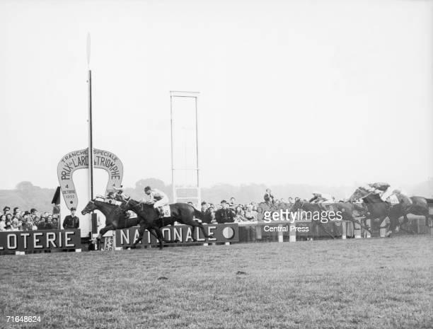 La Sorellina and jockey Maurice Larraun win the Prix de l'Arc de Triomphe at the Longchamp Racecourse in Paris 4th October 1953