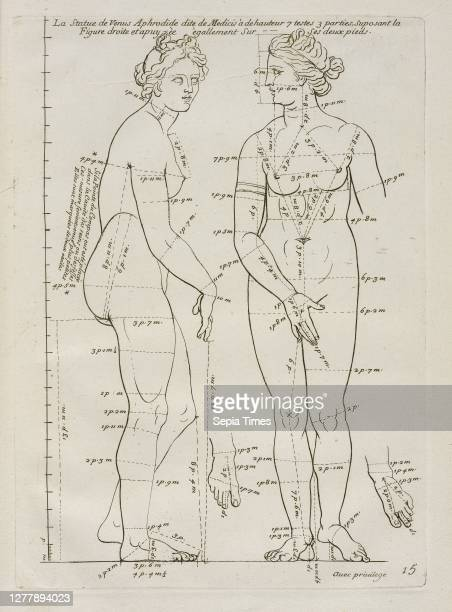 La Statue de Venus Aphrodide, Les proportions du corps humain: mesurées sur les plus belles figures de l'antiquité, Audran, Gérard, 1640-1703,...