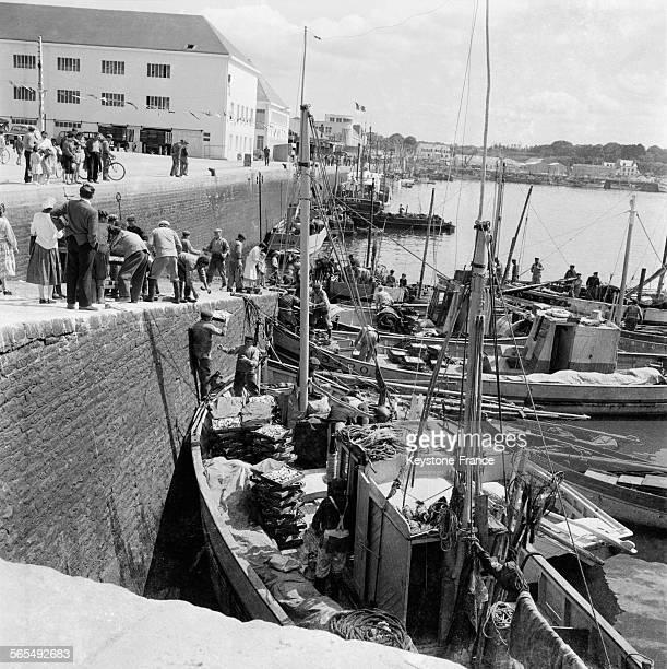 A la suite des événements à Chypre de nombreux grecs vivant en Turquie sont expulsés de Turquie et viennent se réfugier à Athènes Grèce le 10 juin...