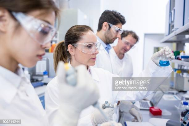 Lab assistants working in lab