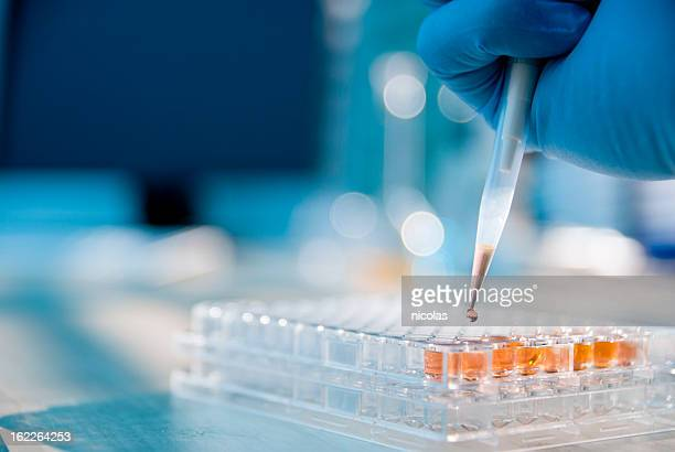 lab experiment - microscope stock pictures, royalty-free photos & images