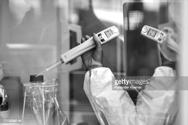 A lab technician analyses swab samples for possible Covid19 infection at the Chemical and Veterinary Analysis Office of East WestphaliaLippe on May...