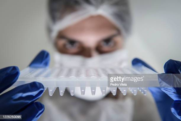 Lab technician holds a PCR plate to perform COVID-19 PCR tests at Hermes Pardini Lab amidst the coronavirus pandemic on July 7, 2020 in Vespasiano,...