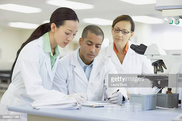 Lab technicians working together