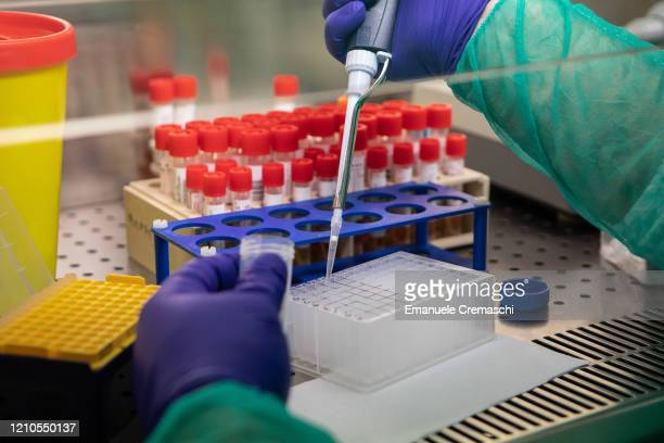 Lab worker tries to isolate the presence of Coronavirus during a swab test process in the Molecular biology laboratory of the Ospedale Niguarda, on...