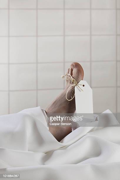 a label tied around the toe of a dead body - cadavre photos et images de collection