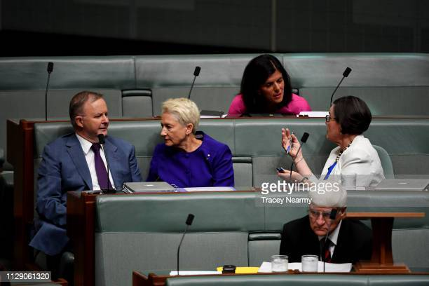 Labor minister Anthony Albanese speaks to Independent Kerryn Phelps next to Julia Banks and Cathy McGowan as they wait for the start of question time...
